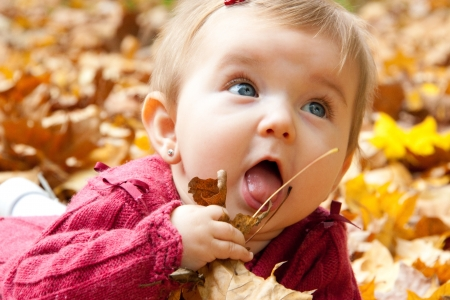 blue eyed: Cute baby girl eating autumn leaves