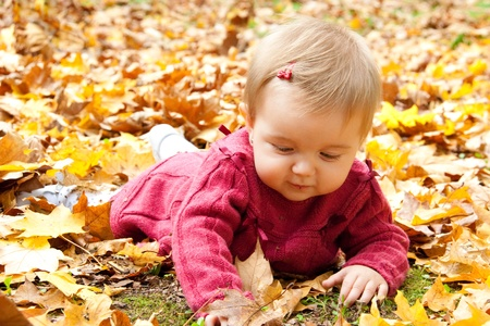 Happy baby girl playing with leaves in autumn