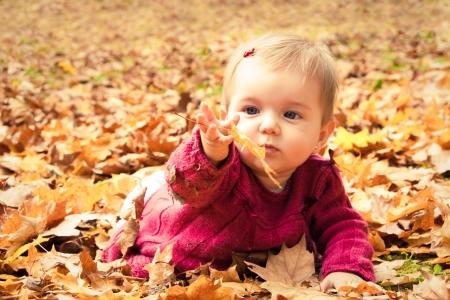 descubrir: Beb� lindo que juega con las hojas en oto�o Foto de archivo
