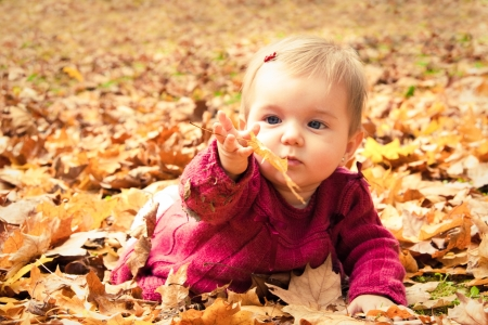 Cute baby girl playing with leaves in autumn
