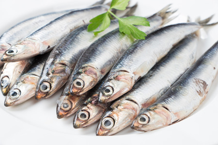 Fresh anchovies with parsley in a dish close up Foto de archivo