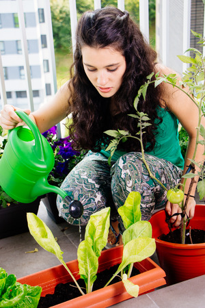 Young woman watering her small kitchen garden in pots on the balcony