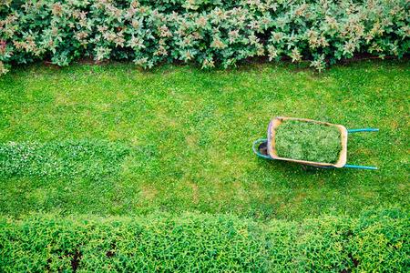 Kruiwagen vol terwijl het gras wordt gesneden in een tuin