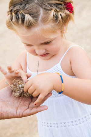 discovering: Little girl discovering an empty nest y dads hands Stock Photo