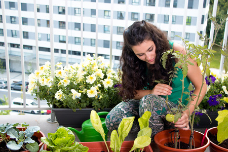 Young woman proud of her small kitchen garden in pots on her balcony in the city Stockfoto