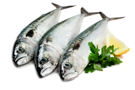 Fresh Mackerel fish isolated on white with parsley and lemon slice