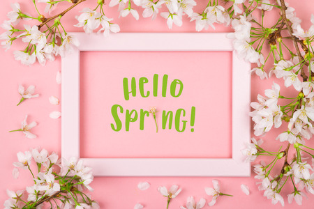 Hello spring text with the i made of a flower inside an empty pink picture frame on a pink background surrounded by cherry blossom and petals. Flat lay Stock Photo