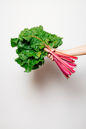 Hand of a girl holding a fresh bunch of swiss chard against a white background Banque d'images