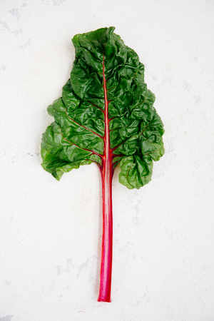 Swiss chard leaf on a rugged white background