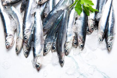 Fresh raw anchovies on ice with a branch of parsley. Top view Imagens