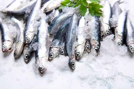 Fresh raw anchovies on ice with a branch of parsley Imagens - 146217506