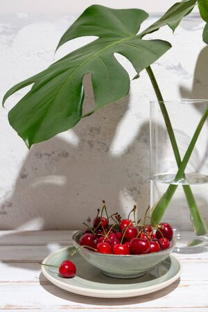 Cherries in a green bowl under monstera leaves in a glass vase on a rustic white table and wall with harsh shadows Imagens - 149038740