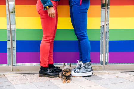 Legs of a lesbian couple in colorful pants in front of a railing with the LGBTQ + flag with their dog in the middle
