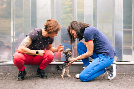 Happy middle aged lesbian couple crouching to play with their yorkshire terrier with a metallic wall at the background
