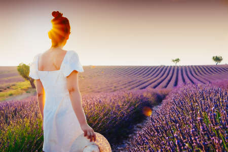 Young woman with hair bun and white dress enjoying the nature and the summer in a lavender field in Valensole, France, at sunset