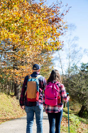 Father and his teenage daughter with backpacks and sticks hiking in autumn in a sunny day. Back view Banque d'images