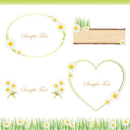 white daisy frame Illustration
