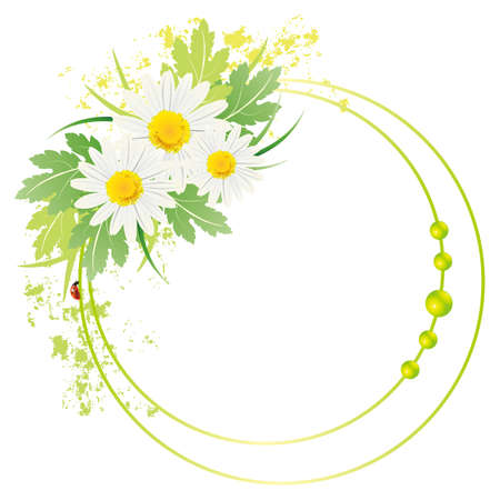 white daisy frame Illustration