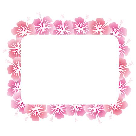 hibiscuses 背景