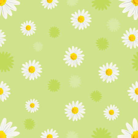 simple purity flowers: daisy background Illustration