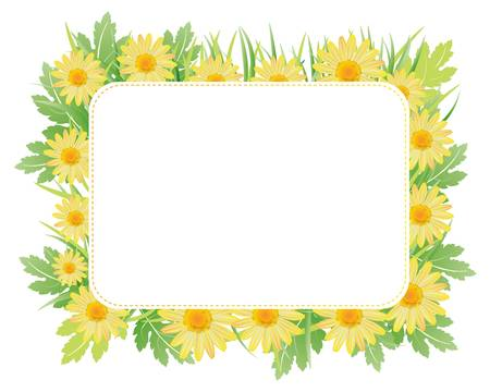 daisy card Stock Vector - 11649191