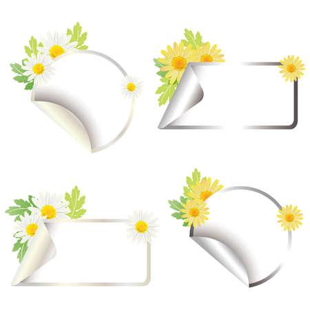 simple purity flowers: daisy sticker