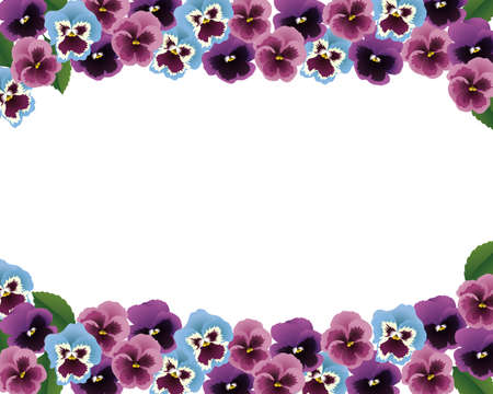 pansy: pansy background