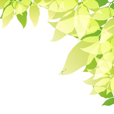 green background Stock Vector - 11649075