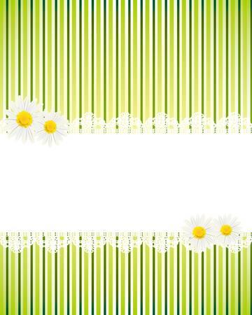 white daisy card Stock Vector - 11649027