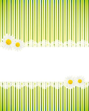 lace frame: white daisy card Illustration