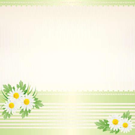 white daisy background Vector