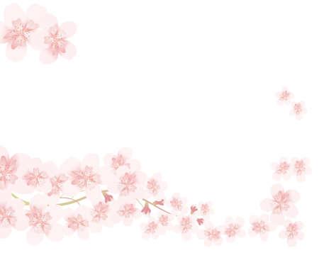 flor cerezo: l�nea de flor de cerezo Vectores