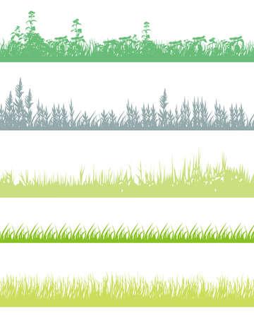 paddy field: grass set