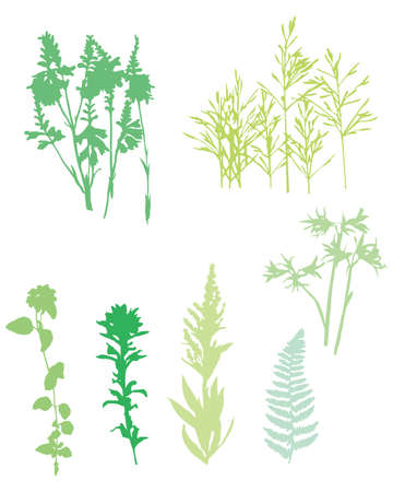 grass set Stock Vector - 11882721