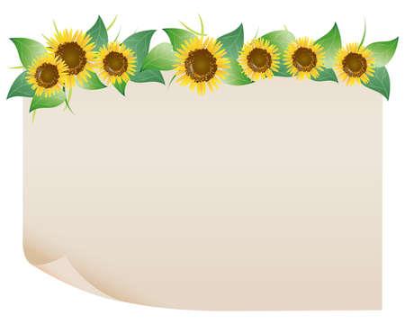 sunflower field: sunflower paper Illustration