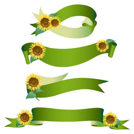 sunflower ribbon Vector