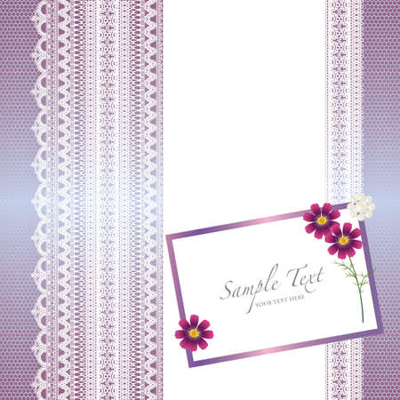 card with lace background and cosmos Banco de Imagens - 12055107