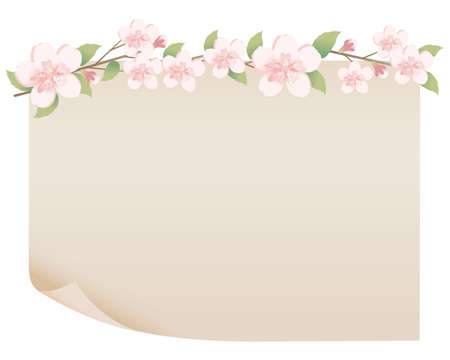 old paper and spring flower Vector