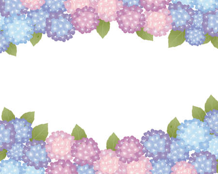 june: hydrangea background