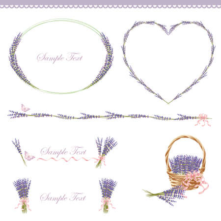 lavender flower: lavender frame Illustration