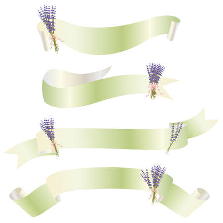 lavender ribbon Vector