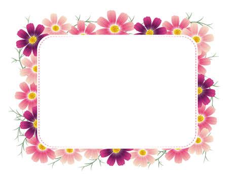 cosmos flower: cosmos frame Illustration