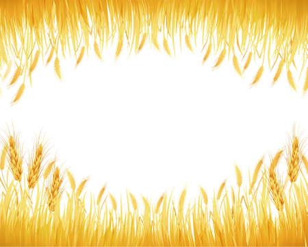 作物の背景  イラスト・ベクター素材