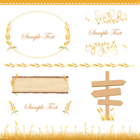 rice harvest: crop set Illustration