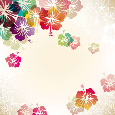 hibiscus flowers: abstract background with hibiscus