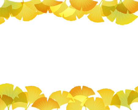 fallen leaves: ginkgo background