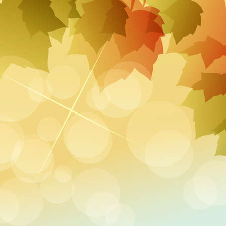 maple of autumn background Vector