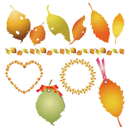 set of fallen leaves Stock Vector - 12482597