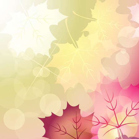 brilliance: maple and brilliance background Illustration