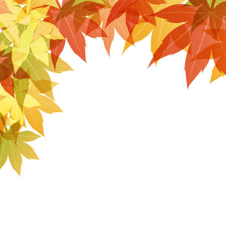 maple background Stock Vector - 12482520